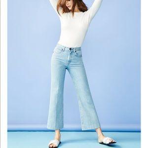 Justine Cropped Wide Leg Jeans in Broken Nelly